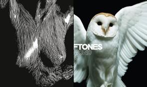 "Jim's ""Best Albums of 2010″ List"